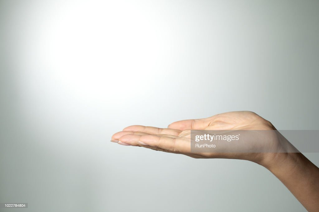 Palm up hand : Stock Photo