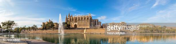 palma cathedral - palma majorca stock pictures, royalty-free photos & images