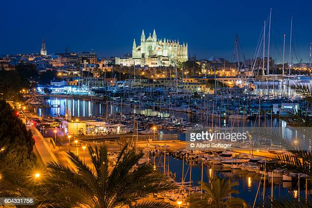 palma de mallorca at night - palma majorca stock photos and pictures