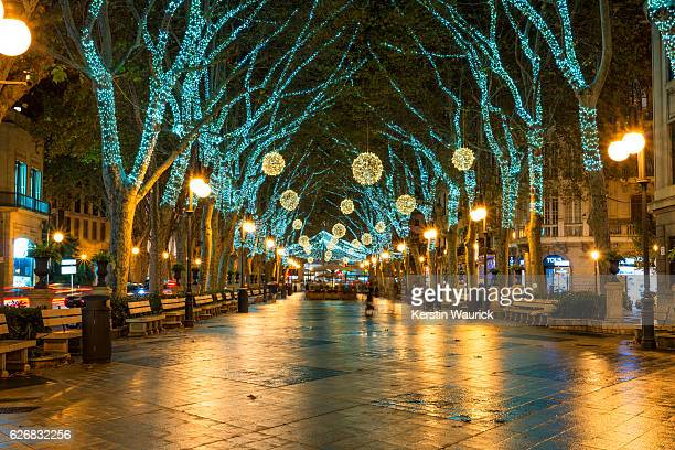 World S Best Palm Tree Christmas Lights Stock Pictures