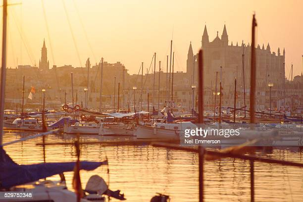 palma, majorca, spain - palma majorca stock photos and pictures
