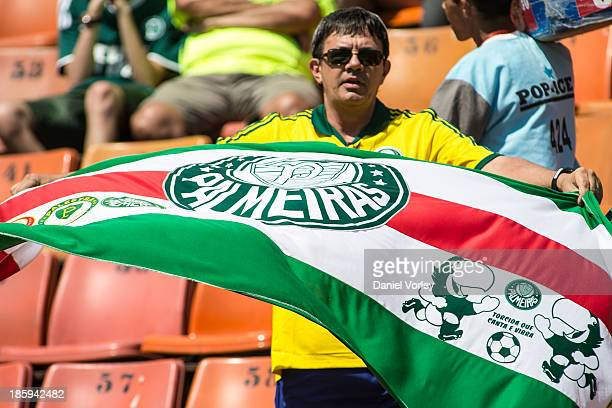 Palmeiras fans watch the match between Palmeiras and Sao Caetano for the Brazilian Series B 2013 at Pacaembu stadium on October 26 2013 in Sao Paulo...