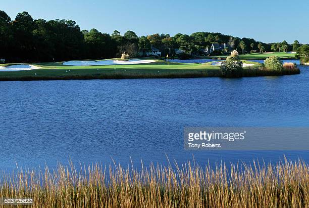 palmetto dunes golf club - hilton head stock pictures, royalty-free photos & images