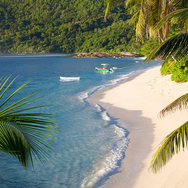Palm-fringed Anse Forbans, Mahe, Seychelles