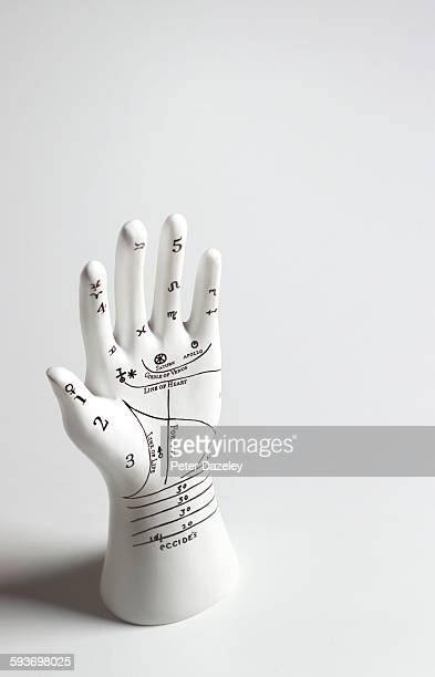 Palmistry hand with copy space
