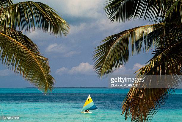 Palms along the coast in Treasure Cay, a sailboat at sea, Abaco island, Bahamas.