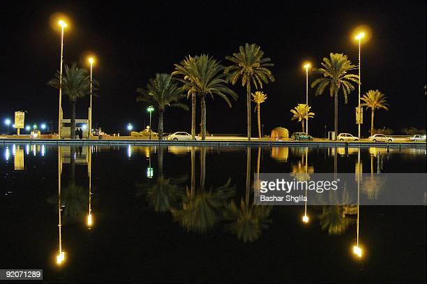 palms & lights reflections - libye photos et images de collection