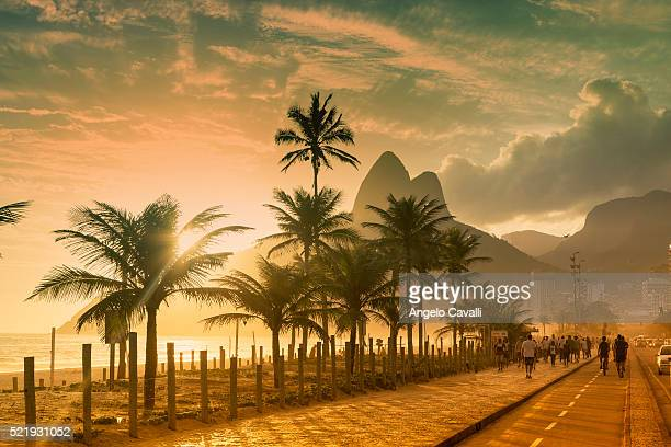 palms on ipanema beach at sunset, rio de janeiro, brazil - brazilië stockfoto's en -beelden