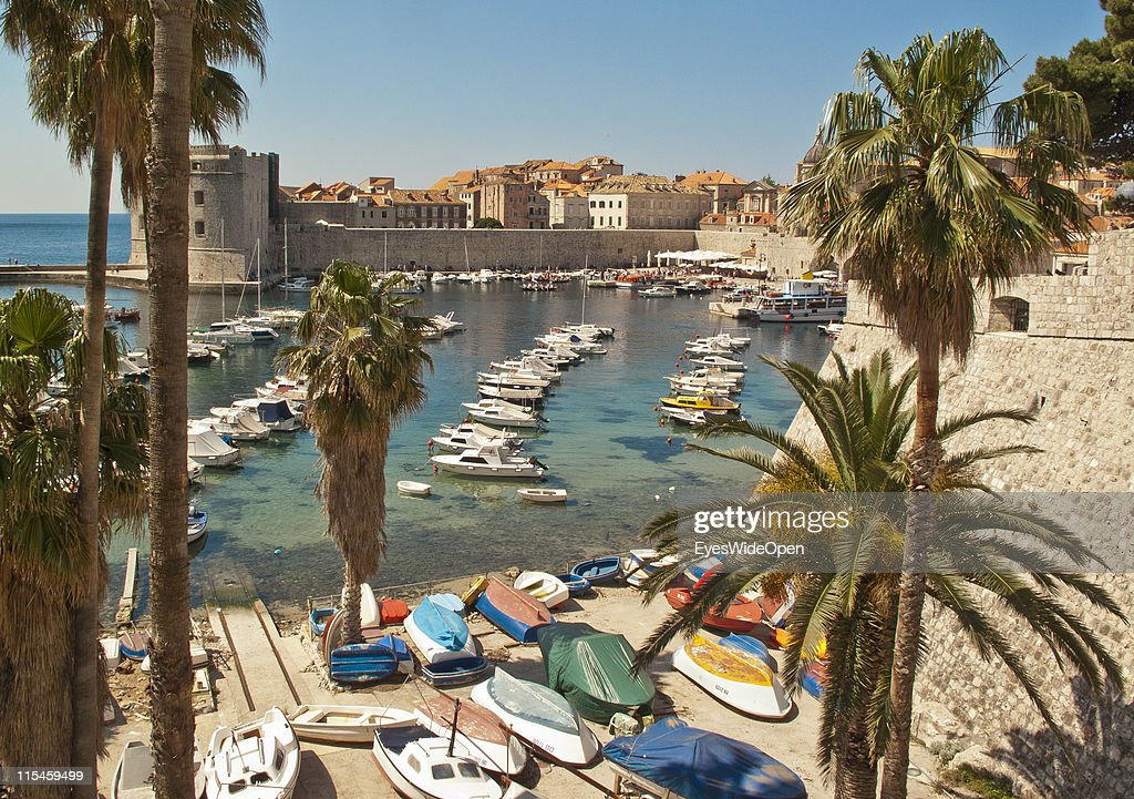 Palmtrees and boats in old harbour port of walled city of Dubrovnik on Dalmatian coast of the Adriatic Sea on May 13, 2011 in Dubrovnik, Croatia. The old town of Dubrovnik is a UNESCO World Heritage Site and surrounded by a 1,9 km long city wall and called the Pearl of the Adriatic.