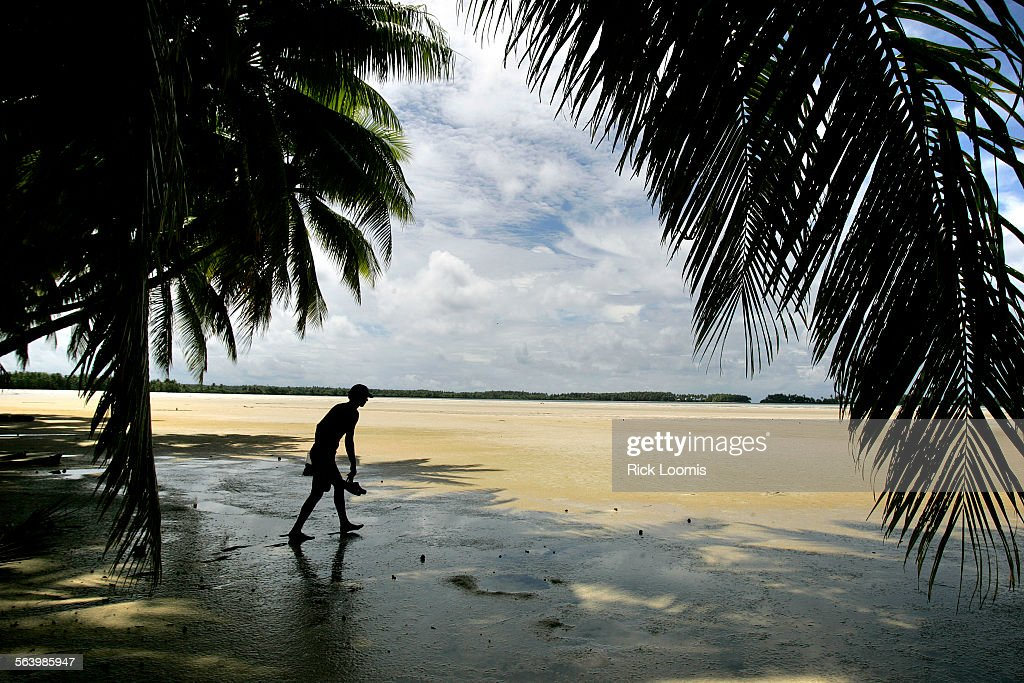 Palmyra Atoll – Palm trees dominate much of the landscape around Palmyra Atoll, located in a remote : News Photo