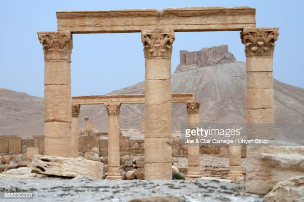 palmyra columns & castle - architectural cornice stock photos and pictures