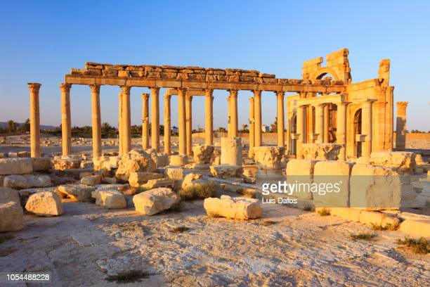 palmyra, great colonnade and monumental arch - arch of septimus severus stock pictures, royalty-free photos & images