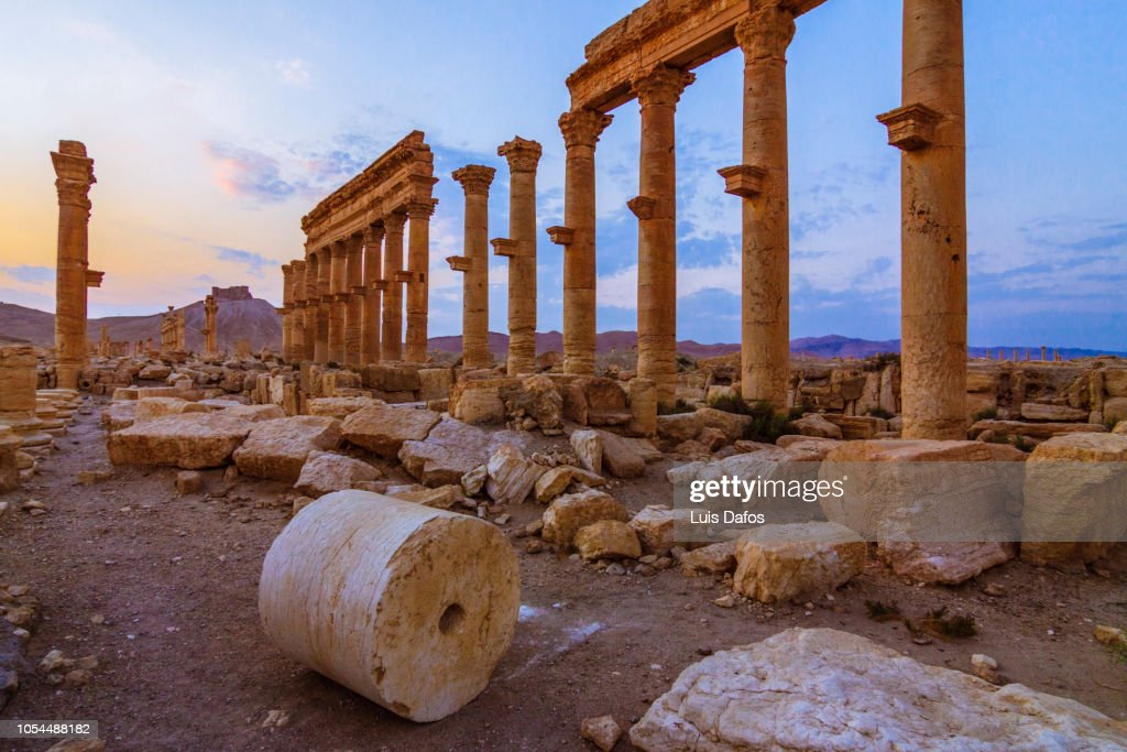 Palmyra, Great Colonnade at sunset : Stock Photo