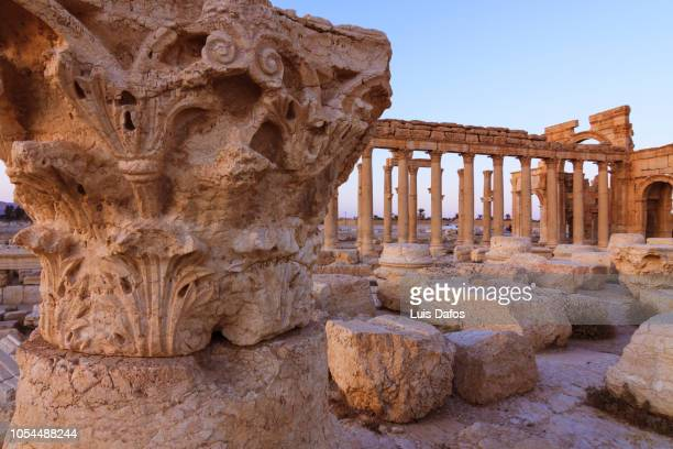 palmyra, great colonnade - international landmark stock pictures, royalty-free photos & images