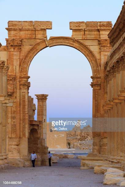 palmyra, monumental arch and great colonnade - arch of septimus severus stock pictures, royalty-free photos & images