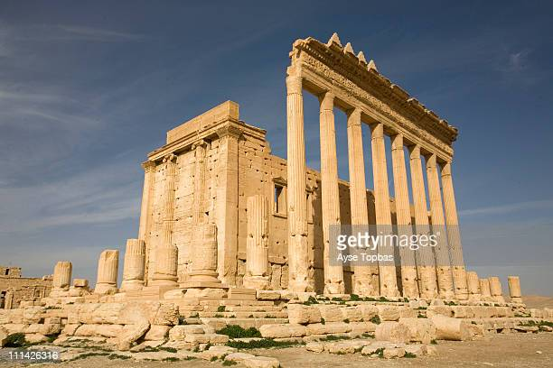 palmyra - damascus stock pictures, royalty-free photos & images