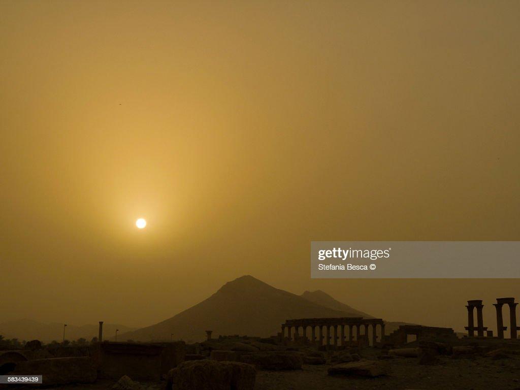 Palmyra, the Bride of the Desert : Stock Photo