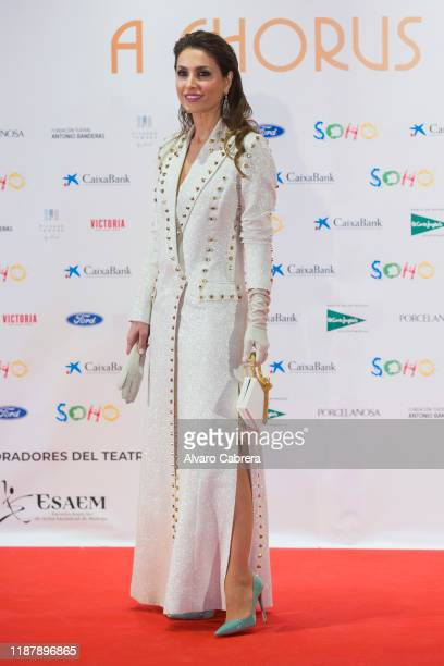 Paloma Cuevas attends the opening of the new theatre Soho Caixabank on November 15, 2019 in Malaga, Spain.