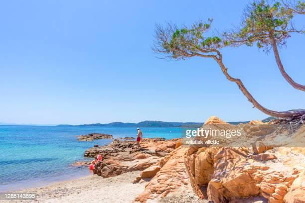 palombaggia beach corsica, france. - corcega fotografías e imágenes de stock