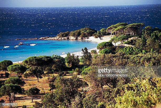 Palombaggia beach south of Porto Vecchio Corsica France