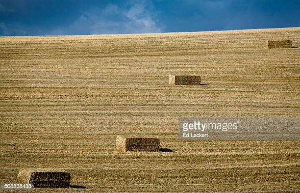 palouse steppes - leckert stock pictures, royalty-free photos & images