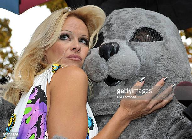 Pam Anderson hugs a seal during an unveiling of the new PETA Campaign at Ontario Legislative Building on October 23 2009 in Toronto Canada