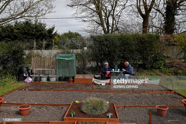 Pam Poole and her partner Chris Burrows create identification labels after planting seeds at their allotment in Hartley Wintney west of London on...
