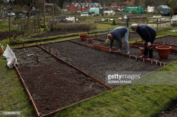 Pam Poole and her partner Chris Burrows work to plant seeds at their allotment in Hartley Wintney west of London on March 29 as life in Britain...