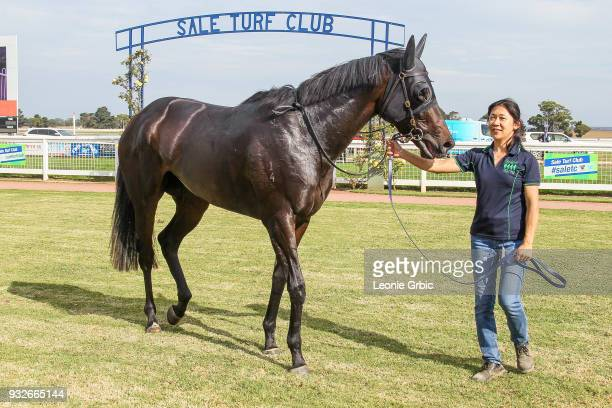 Pamando after winning the Ladbrokes Call Me BM58 Handicap at Sale Racecourse on March 16 2018 in Sale Australia
