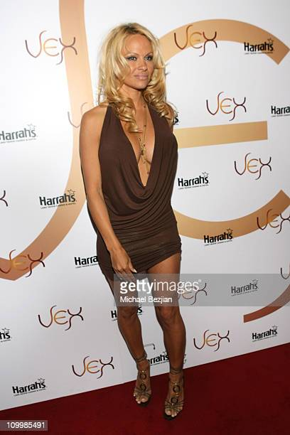 Pamela Anderson Stock Photos And Pictures Getty Images