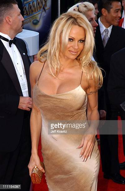Pamela Anderson during The 44th Annual Grammy Awards at Staples Center in Los Angeles California United States