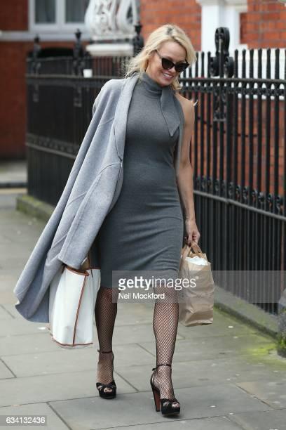 Pamela Anderson seen at the Ecuadorian Embassy taking vegan cheeseburgers to Julian Assange on February 7 2017 in London England