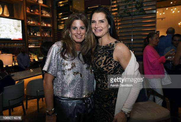 Pamela Cohen and Brooke Shields attend Art Miami 2018 Lifetime Visionary Award Dinner Honoring Dennis Debra Scholl at Boulud Sud Miami on December 6...