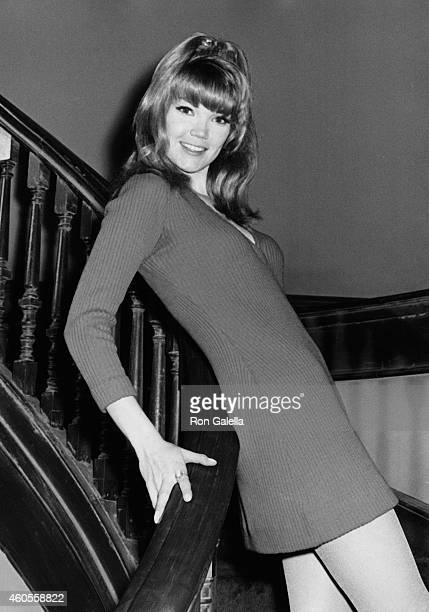 Pamela Rodgers attends The Maltese Bippy Press Party on April 11 1969 at MGM Studios in Culver City California