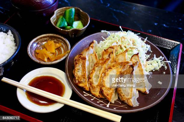 Pan Fried Gyoza with Steamed Rice