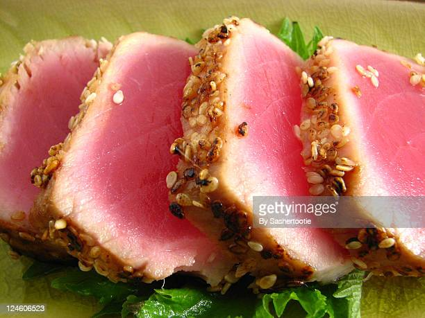 pan seared ahi tuna - yellowfin tuna stock photos and pictures