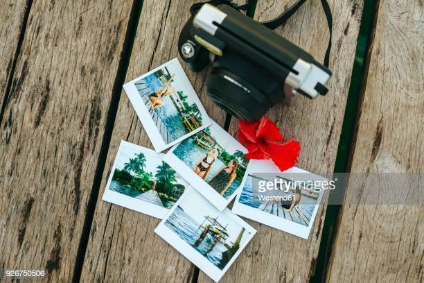 panama, bocas del toro, instant photographs and camera on wooden jetty - transfer image stock pictures, royalty-free photos & images