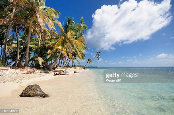 Panama, San Blas Islands, Cayos Los Grullos
