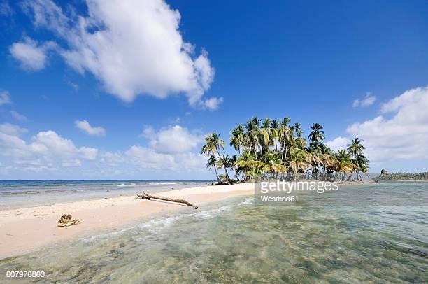 Panama, San Blas Islands, desert island with palms
