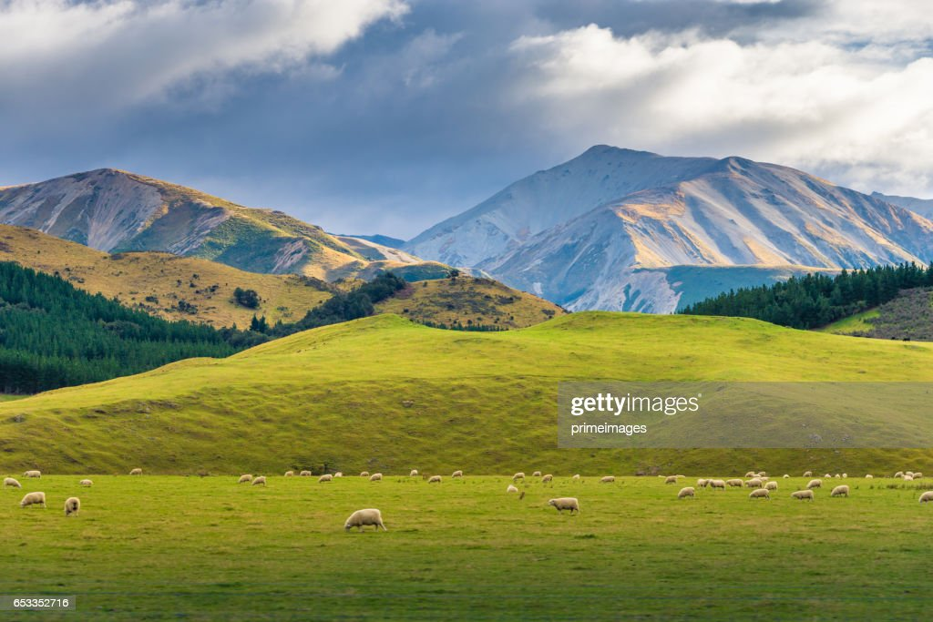 Panaramic view of famaus place at south island Queenstown : Stock Photo