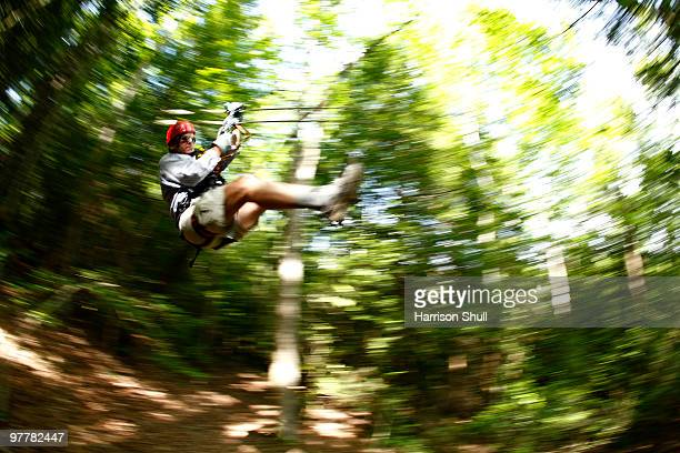 pan-blur image of man on a zip-line in the tree canopy. - fayetteville stock pictures, royalty-free photos & images
