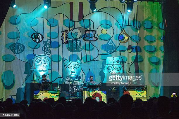 Panda Bear Geologist and Avey Tare of Animal Collective perform at The Fonda Theatre on March 9 2016 in Los Angeles California