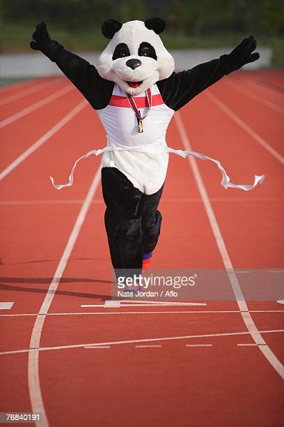 panda crosing the finish line - animal costume stock pictures, royalty-free photos & images