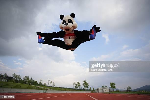 Panda Doing Jumping Splits
