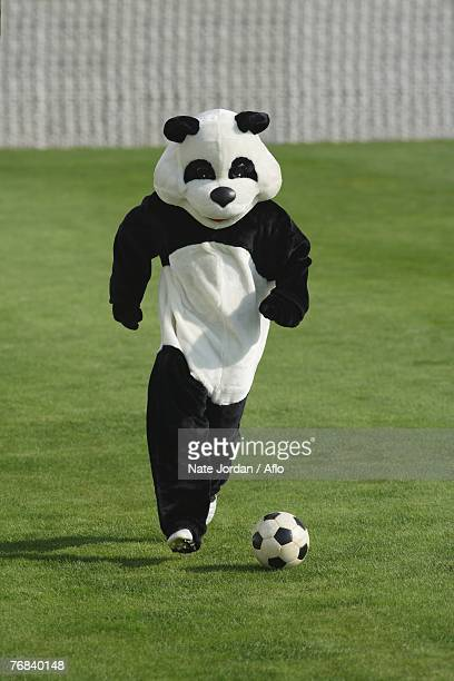 panda playing football - mascot stock pictures, royalty-free photos & images
