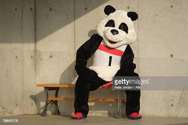 Panda Taking a Break