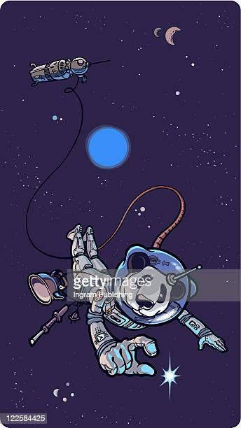 panda the astronaut. - vector stock pictures, royalty-free photos & images