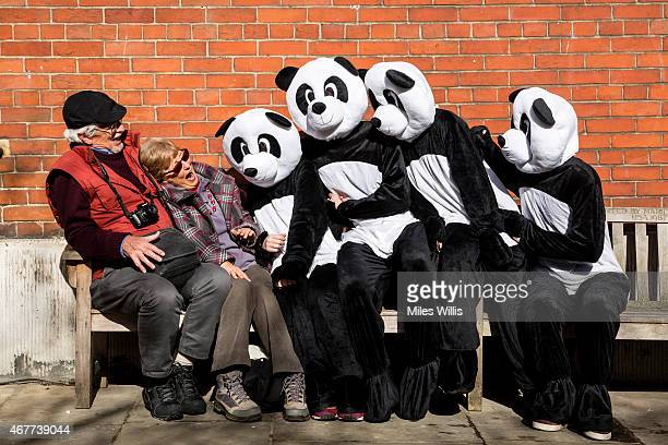 Pandas are seen in London to celebrate the organisation's Earth Hour event which will be held between 2030 and 2130 on Saturday 28 March on March 26...