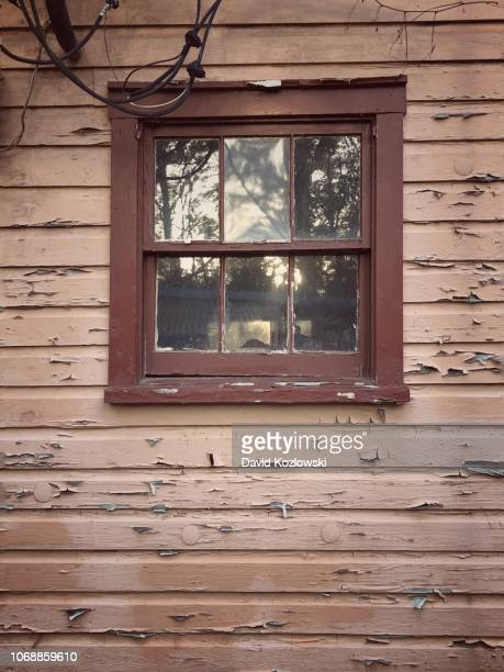 panes and panels - caddo lake stock pictures, royalty-free photos & images
