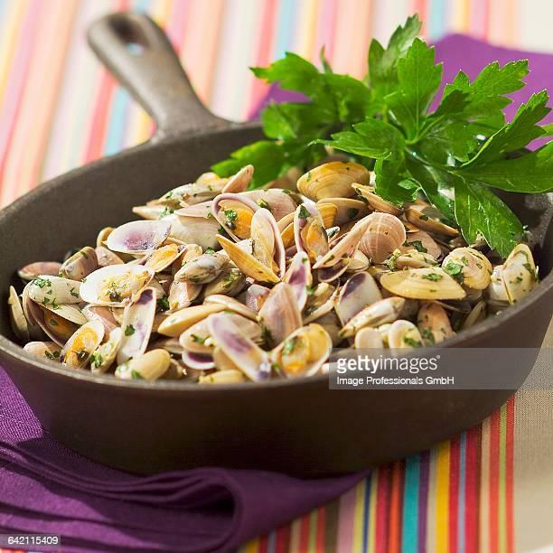 Pan-fried Tellines